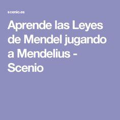 Aprende las Leyes de Mendel jugando a Mendelius - Scenio