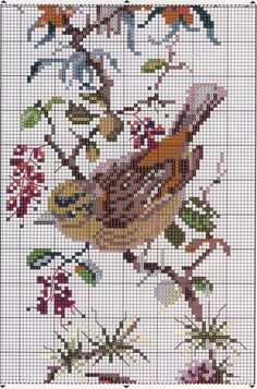 Gallery.ru / Foto # 36 - Aves - marmoshe Cross Stitch Bird, Beaded Cross Stitch, Cross Stitch Animals, Cross Stitch Flowers, Cross Stitch Designs, Cross Stitching, Cross Stitch Embroidery, Cross Stitch Patterns, Christmas Embroidery Patterns