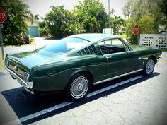 Ford Mustang Fastback Luxury | eBay
