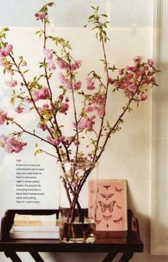 Simple yet classic- Cherry blossoms (Sakura) branches in a tall vase.