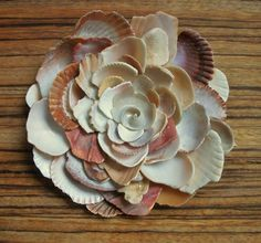 A large sea shell flower created with pieces of shells I found while walking along the beach in Puerto Rico and Florida.    This wall hanging sea shell flower is 6.5 x 6.5. The flower is backed with a wood base and there is a metal picture hanger attached to the back for easy hanging. The sea shell pieces have all been tumbled smooth by the ocean so there are no rough edges. I boil the shells and soak them in detergent so all the ocean odors are long gone. This seashell flower was created…