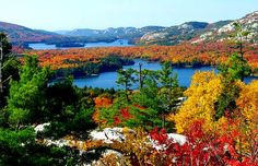 CANADA:Algonquin park -Ontario- --Holiday Experience Airbnb by Francesco -Welcome and enjoy- frbrun Get Outdoors, The Great Outdoors, Ontario Provincial Parks, Ontario Parks, Canada Ontario, Ontario Travel, Algonquin Park, Canoe And Kayak, Back To Nature