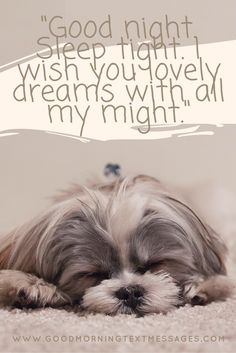 Good night sleep tight wish you lovely dreams with all my might. #goodnight #quotes #cute