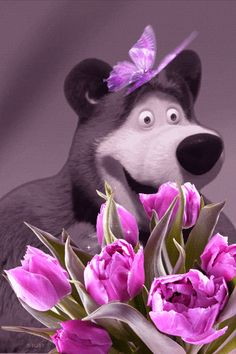 *ƹ̵̡ӝ̵̨̄ʒ*Urso com Borboleta*ƹ̵̡ӝ̵̨̄ʒ*♥ •.¸¸.•