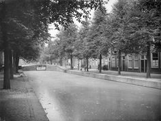 From Wikiwand: Leiden, Cover Photos, Sidewalk, Told You So, Places, Outdoor, Image, History, Historia