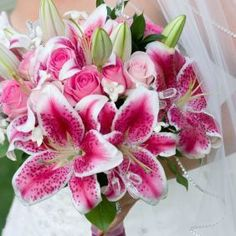 Star Gazer Lilly ... So fragrant and beautiful! Plus, I love those in bouquets with roses <3