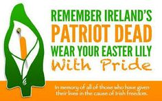 republican easter lily - Google Search