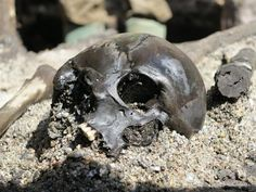 A Danish bog has been harbouring a terrifying secret for thousands of years. Archaeologists spent all summer  2012 excavating a small sample of what has turned out to be a mass grave containing skeletal remains from more than 1,000 warriors who were killed in battle some 2,000 years ago. (Photo: Skanderborg Museum)