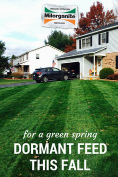 Dormant fertilization, in the North, applied when the weather turns cold, prepares lawns for a healthy spring and early greening.
