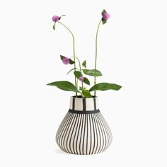 Bring the beauty of contrast into your space with this striped ceramic vase. It works well within a wide variety of interiors and adds a clean and impactful graphic touch. Enjoy with a plant or on its own.