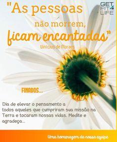 #finados, dia de #saudade, #prece e #gratidão