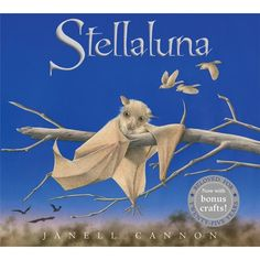We spoke with author-illustrator Janell Cannon about the origins and legacy of her beloved picture book, 'Stellaluna,' which will be commemorated with a edition from HMH next month. Free Books, My Books, Baby Fruit, Fruit Bat, Stellaluna, Houghton Mifflin Harcourt, Dream Book, Children's Picture Books, 25th Anniversary