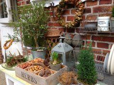 Fru Pedersens have: Nødder, kogler og gevirer.http://frupedersenshave.blogspot.dk/2013/11/ndder-kogler-og-gevirer.html