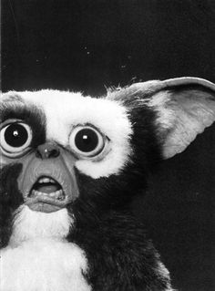 scary cute film Black and White movie creepy white classic horror gore black gremlins and 80s Movies, Good Movies, Movie Tv, Les Gremlins, Gremlins Gizmo, Geeks, Scary, Creepy, Poster S