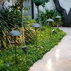 "This stylish path light is a perfect choice for your landscape. Light up walkways and garden areas to enhance the look and keep things safe. This ""mushroom top"" design comes in a classic bronze finish. The long-life LED means no more time-consuming bulb changes. And, because it uses so little energy, you can have more lights on your transformer/system."