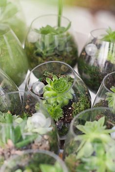 Botanical-chic-wedding with tiny succulents - Ruffled Keywords: #forestweddings #jevelweddingplanning Follow Us: www.jevelweddingplanning.com www.facebook.com/jevelweddingplanning/