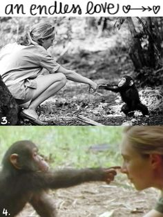 I would love to visit her chimpanzee sanctuary in South Africa - jane goodall