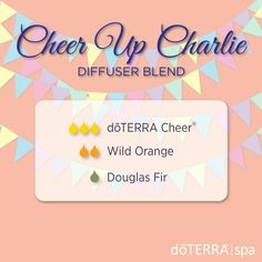 When you feel like you need to chin up, cheer up, or charge up for the day, the Cheer Up Charlie diffuser blend is ready to lift your spirits.