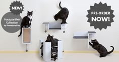 Here it is! The new Hauspanther Collection of designer cat furniture from Primetime Petz isfinally on itsway to the warehouse and will be shipping in early August! And this is your chance to pre-order and SAVE! Hauspanther readers can get 20% off withfree shipping for a limited time! The new collection include four pieces: the…