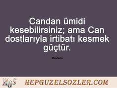 Hz Mevlana'nın En Güzel Dostluk Sözleri My Friend, Friendship, Quotes