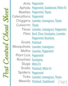 Cheat Sheet for Pest Control