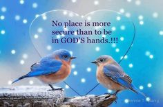 Motivational Quotes On Strength | Wisdom Quotes no place is more secure than to be in God's hands ...