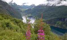 Disse skal styre det nye reiselivet i M?re og Romsdal