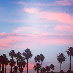 Sending you Sunday funday vibes from Palm Springs #sundayfunday #sundaymorning #sundayvibes #weekendvibes #summertime #palmsprings #palmspringsstyle #palmtrees #palmtreesfordays #pinksky #ihavethisthingwithpink #acolorstory #livecolorfully #abmlifeiscolorful #abmhappylife #flashesofdelight #thatsdarling #darlingweekend #pursuepretty #myunicornlife #nothingisordinary #dscolor #dshappy #thehappynow #livethelittlethings #makeyousmilestyle #californiadreaming #lastdaysofsummer #naturalbeauty