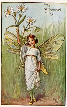 This beautiful Stitchwort Flower Fairy Vintage Print by Cicely Mary Barker was printed c.1927 and is an original book plate from an early Flower Fairy book. Cicely Barker created 168 flower fairy illustrations in total for her many books.