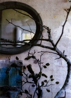 Wall decoration with bicycle tire and branch. 3D collage