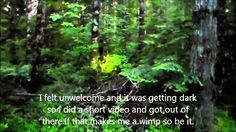Breaking Footage: Bigfoot returning to it's Den