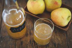 "Fizzy Blender ""Juiced"" Apple Kombucha"