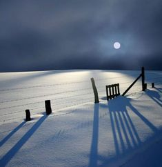 Moonlight on the snow/Germany Veronika Pinke Photography Winter Szenen, Winter Magic, Winter Night, Snow Night, Moon Shadow, Foto Fun, Snow Scenes, Snow And Ice, Wonderful Picture