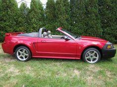 2001 Mustang Cobra SVT Convertible - Lazer