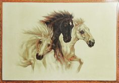 Three Wild Beauties Poster (Reprint on Paper - Unframed) Horse Artwork, Nature Posters, Online Posters, Animal Posters, Sculptures, Horses, Living Room, Paper, Shop
