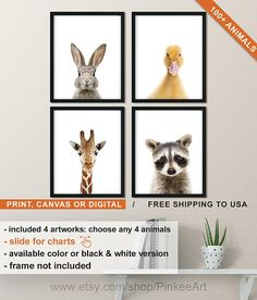 Baby Animal Canvas Wall Art Or Prints On Paper Set Of 4 Nursery Room Decor Duckling Bunny Giraffe Rac Digital Available Too