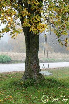 Farm Country mattina caduta in una giornata nebbiosa
