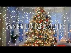 Cele Mai Frumoase Urari de Craciun - Sarbatori Fericite! - YouTube Merry Christmas Pictures, Christmas Quotes, Vintage Christmas, Christmas Tree, Forest Flowers, Christmas Wallpaper, Greeting Cards, Holiday Decor, Blog
