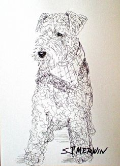 Airedale art, Airedale painting, Dog, portrait, Quick Draw, Montana artist SJ Merwin, painting by artist Sandra Merwin