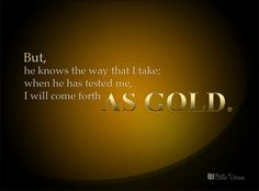 I AM COMING SOON!         : When HE Has Tested Me, I Will Come Forth As Gold