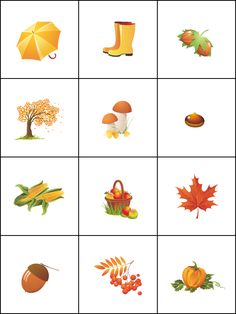 Memorie herfst / Jeu de mémoire, l'automne