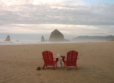 Stephanie Inn - Cannon Beach Oregon - your view as you step out the door