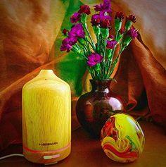 Nuova offerta in #cucina : HAMSWAN Diffusore di Aromi ad Ultrasuoni 100ml/Umidificatore Ultrasonico Aromaterapia/Diffusore di Oli Essenziali con LED di 7 Colori Fatto da Legno di Colori Naturali 30-secondi Timer Autospegnimento per Casa Yoga Spa Camera da letto Soggiorno Stanza per Bambini a soli 18.35 EUR. Affrettati! hai tempo solo fino a 2016-09-28 23:35:00