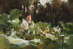 ... chienchungwei: Art Watercolors, Student Watercolor Paintings
