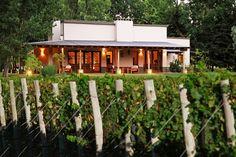 Lo mejor del turismo del vino de Mendoza. #wine