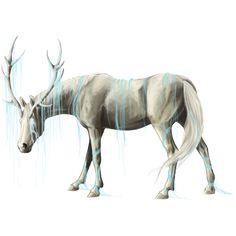 Unicorn coat from Howrse.