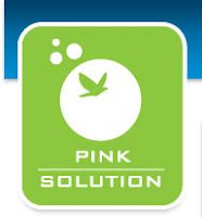 Pink Solution - it is suppose to be an amazing natural non toxic cleaner. It says it can replace every cleaner in your home. Has anyone used it? is it worth the price?