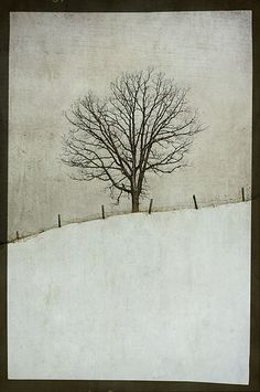 halfway through winter by jamie heiden, via Flickr