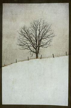 halfway through winter by jamie heiden, via Flickr