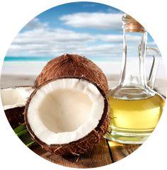 MYTH 2 Coconut oil can cause heart disease